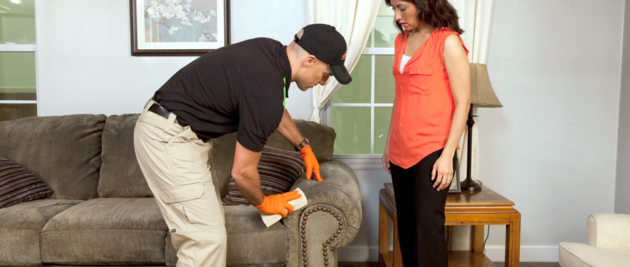 Lake Township, OH carpet upholstery cleaning